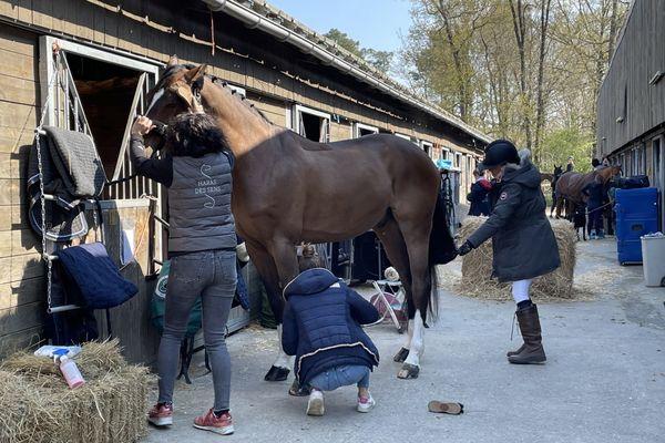 Les organisateurs doivent gérer les règles sanitaires pour la Covid-19 des humains et la rhinopneumonie des chevaux.