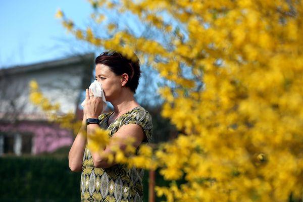 Un français sur trois souffre d'allergie aux pollens