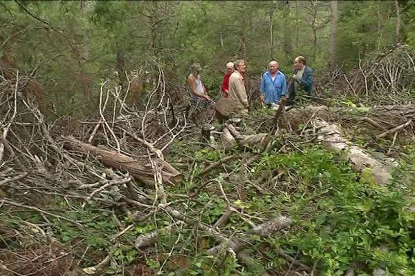 Les habitants du hameau des Miquelets craignent un feu de forêt