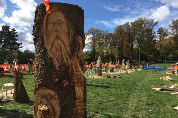 Un vieux sage sculpté à la tronçonneuse sur la surface de ce tronc semble surveiller la compétition...