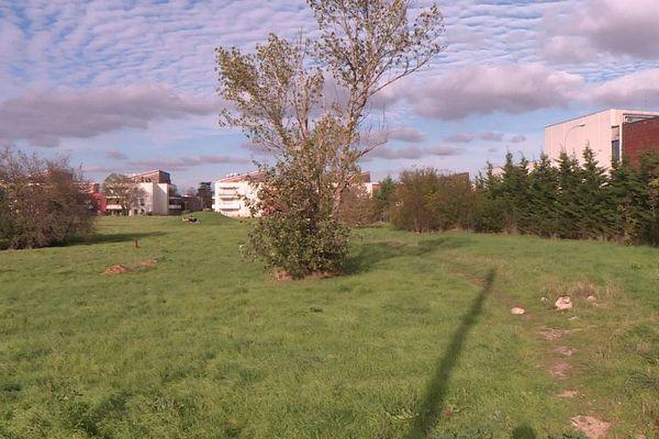 Une ferme urbaine, des jardins pédagogiques : un projet porté par plusieurs associations de quartier.