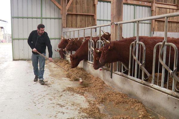 Dans cet élevage de vaches salers, à côté de Vitré, la ferme a été transmise du père au fils. L'un comme l'autre ne comptent pas que sur leur pension pour vivre leur retraite