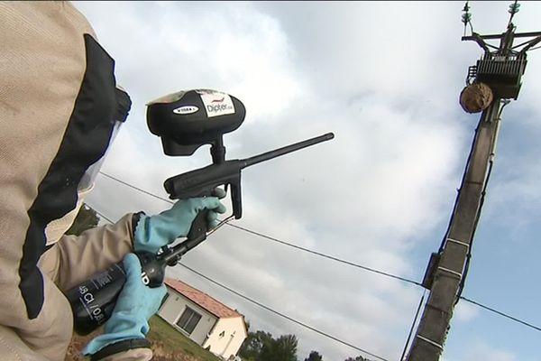 Etienne Roumaillac intervient sur un pylone électrique pour détruire le nid de frelons