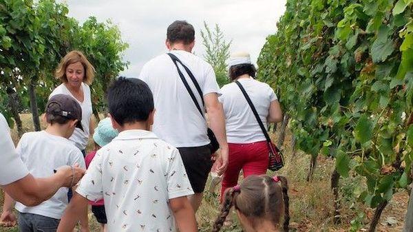 Une balade en famille dans le vignoble bergeracois