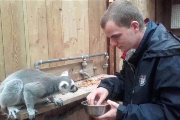 Clément, autiste de 20 ans, a pu faire son service civique dans une ferme en Afrique et approcher son rêve de devenir soigneur animalier.