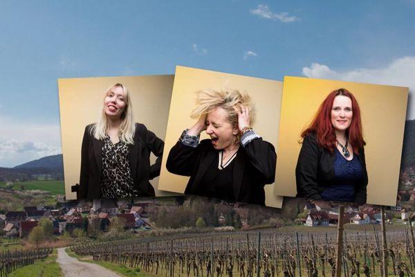 La 4e édition du concours de chant D'Stìmme, de la sélection des maquettes des participants jusqu'à l'annonce du vainqueur.
