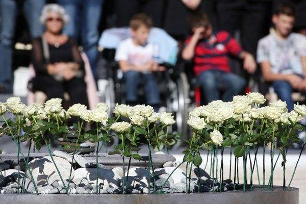Une rose blanche en hommage à chaque victime