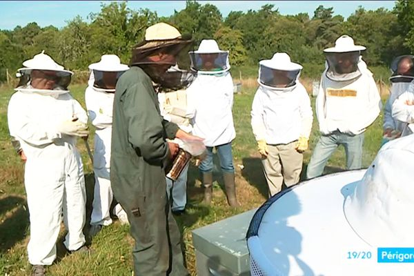 De plus en plus de particuliers s'intéressent au monde des abeilles