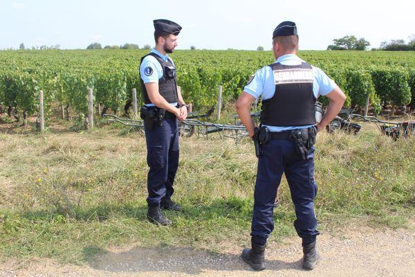 Pour la quatrième année de rang, un dispositif spécial de la gendarmerie surveillera les vignobles pendant les vendanges.