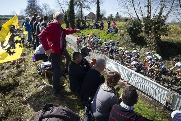 Le Tour des Flandres, monument du cyclisme et du sport belge.