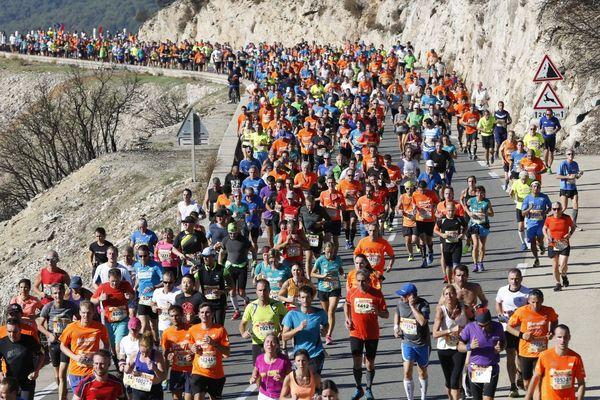 Illustration - Plus de 20 000 coureurs s'étaient réunis lors de la 41e édition du semi-marathon Marseille-Cassis.