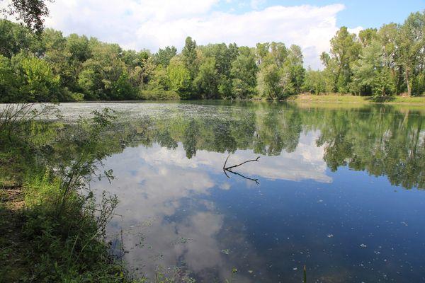Restauration des étangs des îles du Rhône à Châteauneuf-du-Rhône