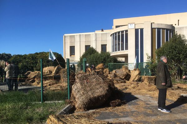 Des balles de foin devant l'entrée de la DDTM à Arles.
