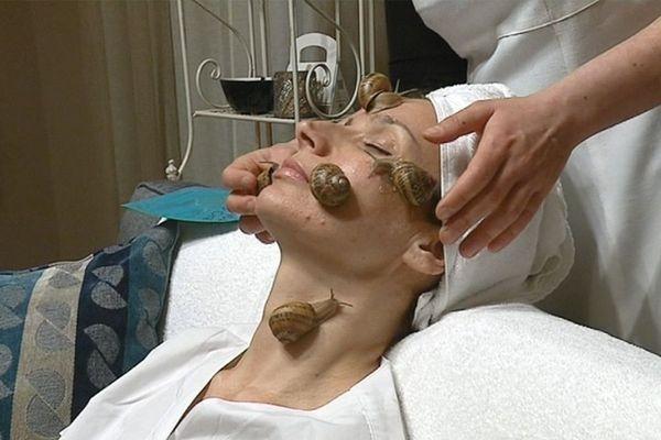 """La bave d'escargot : le """"graal"""" du 21e siècle pour l'industrie cosmétique."""