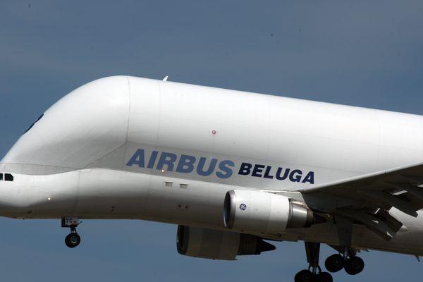 Le Beluga, l'avion qui transporte des avions, devrait multiplier dans les mois à venir les rotations au dessus de Saint-Nazaire un bon signe pour la santé économique de toute une région.
