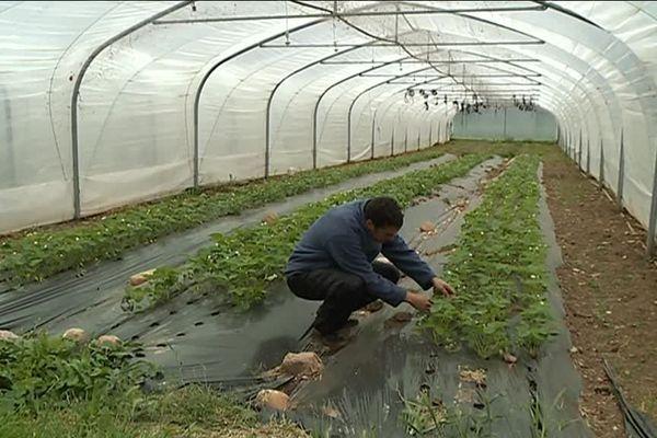 Le rêve d'exploitants agricoles devenu possible grâce au soutien de plusieurs instance européennes