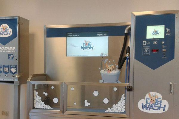 L'automate permet de laver des chiens de toutes tailles