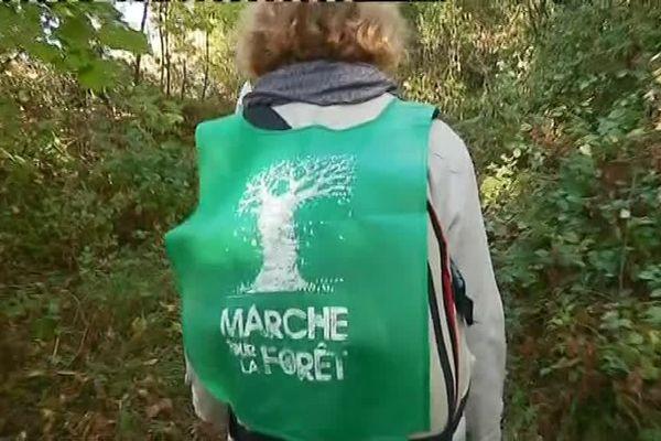 Les marcheurs de l'ONF veulent sensibiliser le grand public sur la perte de contrôle qu'ont les agents de l'ONF face à une industrialisation de la ressource forestière