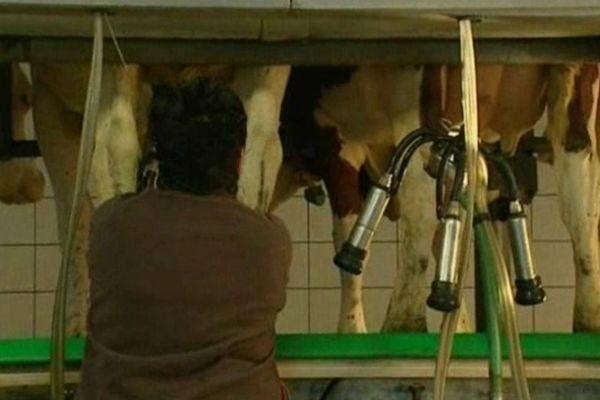 La situation des producteurs de lait est trés délicate