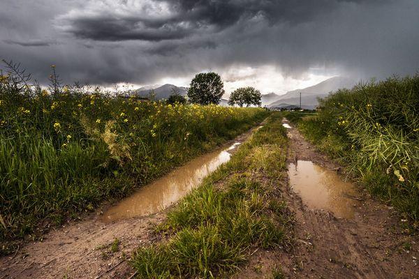 En cette fin de printemps 2018, orages et fortes pluies font partie du quotidien en Auvergne-Rhône-Alpes, comme dans le reste du pays. Ces fortes chutes d'eau ne signifient pas pour autant que le risque de sécheresse est écarté à l'approche de l'été.