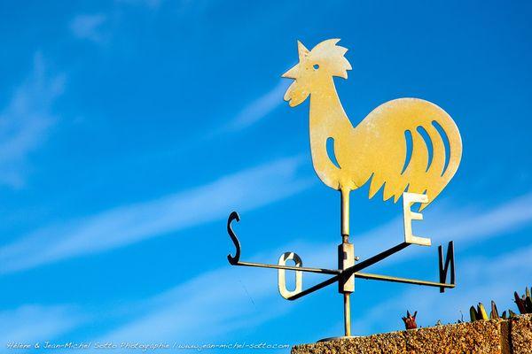Girouette sur l'île de Saint-Cado - Belz - Morbihan (56), Ria d'Etel, Belz, Saint-Cado