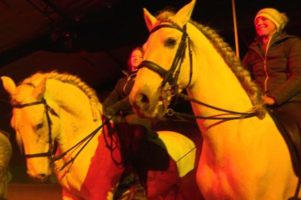 Les chevaux sont dressés tous les jours.