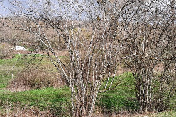 Les fouilles ont repris ce mardi 6 avril près de Rumel, pour retrouver le corps d'Estelle Mouzin