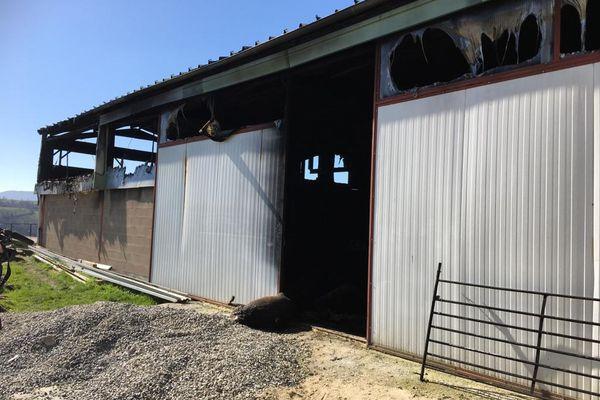 Il ne reste plus rien de cette bergerie de 700 m2 qui a brulé à Viane (Tarn) et où ont péri 450 brebis.
