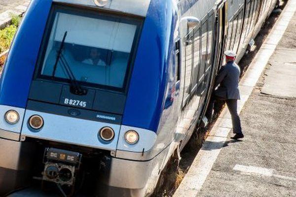 ILLUSTRATION - Un TER de la SNCF.