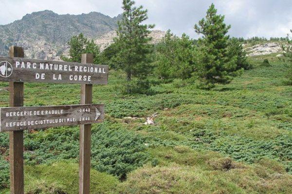 Actuellement, le parc régional s'étend sur plus de 350 000 hectares, soit 40 % de la Corse.