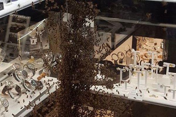 Une bijouterie du centre-ville de Montpellier a été envahie par des milliers d'abeilles - 20 avril 2016