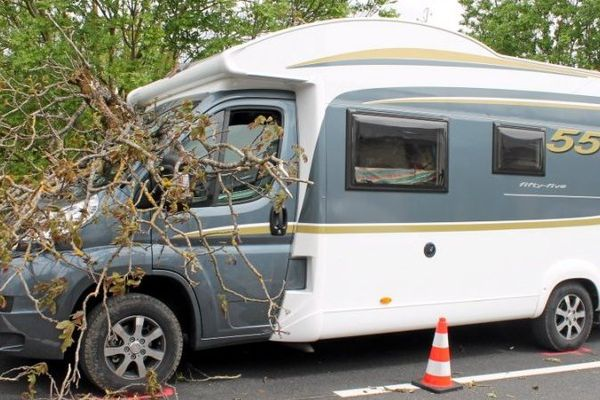 La branche a traversé le pare-brise du véhicule
