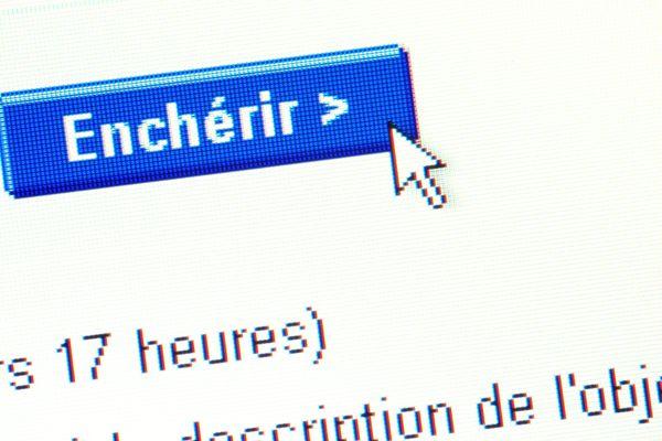 Les ventes aux enchères en direct sur internet enregistrent des records de connexions en cette période de confinement
