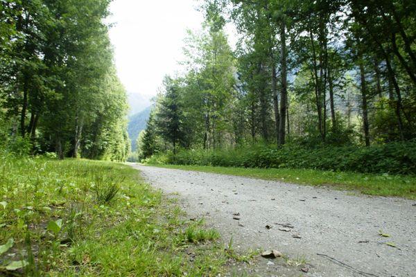 Le bois du Bouchet, où une femme aurait été agressée lundi 14 décembre 2020, à Chamonix.
