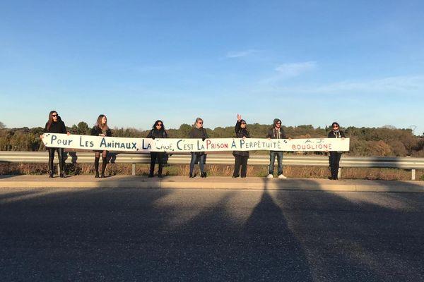 A Vendargues, les militants manifestent pour défendre les animaux à l'entrée du cirque Médrano - 28 décembre 2019