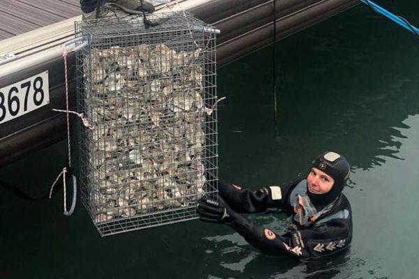 """Une """"biohut"""" en cours d'installation dans un des ports de Golfe Juan."""
