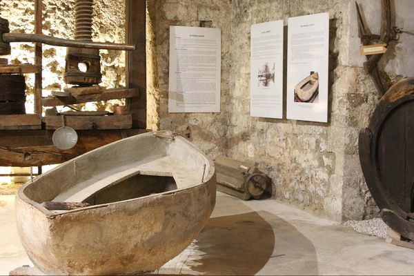Les thématiques du musée sont très diversifiées, alliant archéologie, art sacré, beaux-arts, arts, traditions populaires et histoire naturelle.