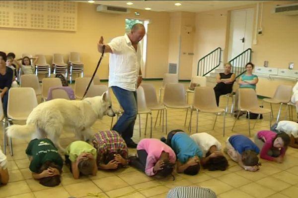 Les morsures de chien représentent près de 2% des accidents domestiques en France.