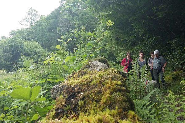 Une belle randonnée de près de 2h30 autour du village de Masgot en Creuse