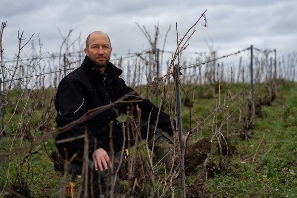 Vincent Collet, en train de tailler la vigne, février 2021.