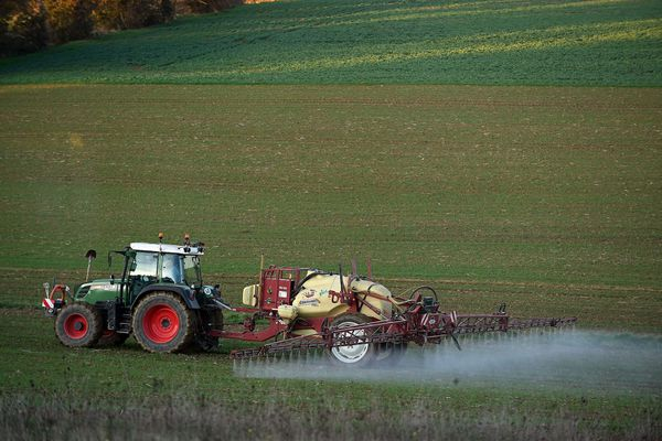 Le 31 décembre 2020, le Conseil d'Etat a tranché : la réglementation de l'usage des pesticides relève de la seule compétence de l'Etat.