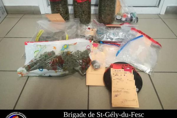Saisie de drogue à Saint-Gély-du-Fesc (Hérault) en mars 2021