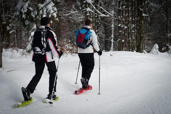 Le ski de fond est la star de l'hiver au Ballon d'Alsace