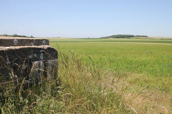 En face du bunker, l'ancienne piste d'aviation d'où s'élançaient et atterrissaient les chasseurs allemands.
