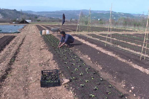 100 hectares de terrain constructibles transformés en zone agricole à Saint-Péray en Ardèche