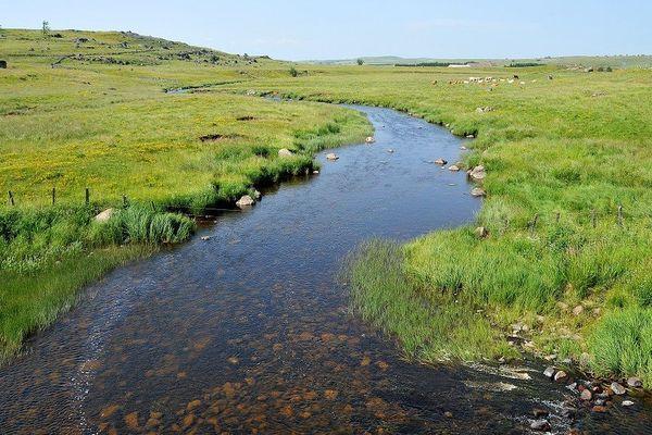 Les cours d'eau du parc naturel régional de l'Aubrac doivent être protégés.