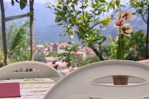 D'après l'Agence de Tourisme de la Corse, il y aurait une centaine de chambres d'hôtes sur l'île, et 2.700 gîtes et meublés touristiques.