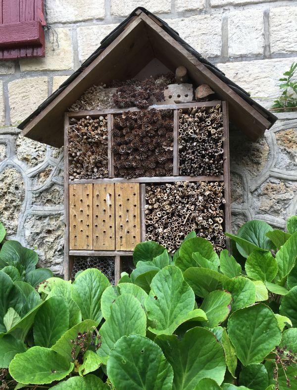 Son hôtel à insectes fait maison est très apprécié des abeilles maçonnes.