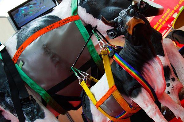 Le harnais lève-vache de Dominique Lebreton a décroché un Sommet d'Or dans la catégorie Equipement d'Elevage.
