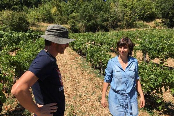 Sébastien Lauveur et son épouse Nathalie font renaître le vignoble de Montmurat (Cantal)